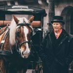 Central Park Carriage Rides